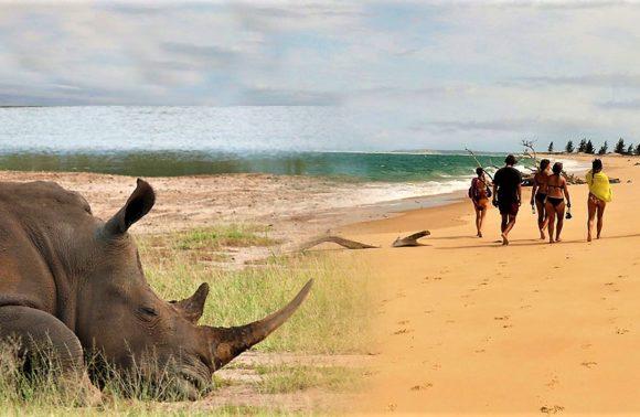 LOS 5 GRANDES DE ÁFRICA Y EL PARAISO A TU ALCANCE