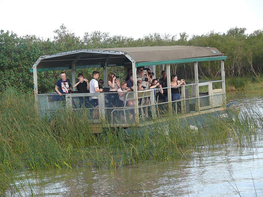 , Safari fotografico